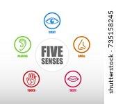 five senses icon | Shutterstock .eps vector #735158245