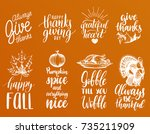 vector thanksgiving lettering... | Shutterstock .eps vector #735211909