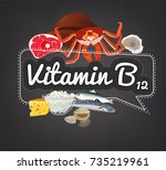 vitamin b12 banner. beautiful... | Shutterstock .eps vector #735219961