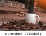 autumn leaves  cup of coffee... | Shutterstock . vector #735268051