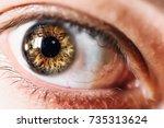 human eye macro  selective... | Shutterstock . vector #735313624