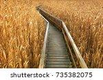 wooden path going deep in field ... | Shutterstock . vector #735382075