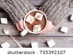 hot chocolate with marshmallow... | Shutterstock . vector #735392107
