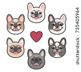 Frenchie Color Spectrum. Frenc...