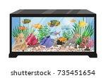Aquarium Tank Cartoon Vector...