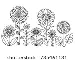Decorative Flowers. Hand Drawn...