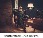 senior man in luxury interior | Shutterstock . vector #735500191