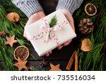 woman holding christmas... | Shutterstock . vector #735516034