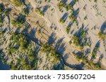 View Of Desert Sand  Brush  An...
