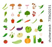 fresh vegetables set. tomatoes... | Shutterstock .eps vector #735620251