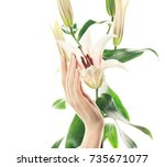 closeup image of beautiful... | Shutterstock . vector #735671077