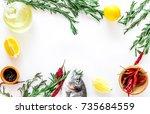 preparing dorado with spices... | Shutterstock . vector #735684559