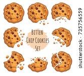 vector chocolate crumbs chips... | Shutterstock .eps vector #735756559
