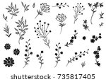 embroidery flower field herb... | Shutterstock .eps vector #735817405