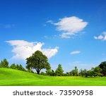 Green Field  Springtime