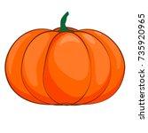 halloween isolated pumpkin in... | Shutterstock .eps vector #735920965