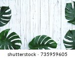 green leaves  tropical palm... | Shutterstock . vector #735959605