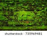 green moss growing on old brick ... | Shutterstock . vector #735969481