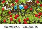 cartoon scene of rose garden... | Shutterstock . vector #736003045