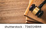law theme  lawyer's desk. judge ... | Shutterstock . vector #736014844