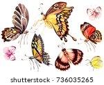 watercolor set with butterflies ... | Shutterstock . vector #736035265