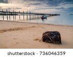 stump on beach with wooden pier. | Shutterstock . vector #736046359