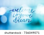 welcome to your dream  vector... | Shutterstock .eps vector #736049071