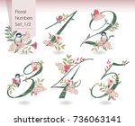 vector illustration of floral... | Shutterstock .eps vector #736063141