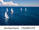 Regatta Sailboat And Catamaran...
