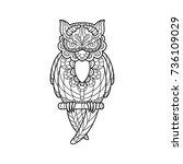 linear owls pattern in doodle... | Shutterstock .eps vector #736109029