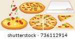 margarita pizza kit.... | Shutterstock .eps vector #736112914