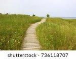kohler andrae state park.... | Shutterstock . vector #736118707