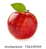 red apple in closeup | Shutterstock . vector #736139539