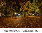 city night park in autumn with... | Shutterstock . vector #736183345