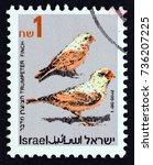 israel   circa 1992  a stamp... | Shutterstock . vector #736207225