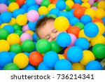a boy has fun in the playing... | Shutterstock . vector #736214341