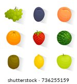 set of web icons of fruits.... | Shutterstock .eps vector #736255159