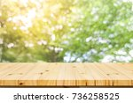 wood shelf table with garden...   Shutterstock . vector #736258525
