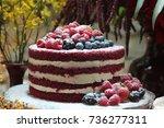 wedding cake   Shutterstock . vector #736277311