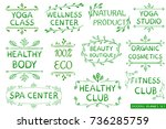 vector set  green hand drawn... | Shutterstock .eps vector #736285759