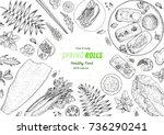 spring rolls and ingredients... | Shutterstock .eps vector #736290241