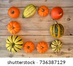 frame made of little pumpkins... | Shutterstock . vector #736387129