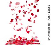Stock photo rose petals fall to the floor isolated background blurred background of rose petals 736412659