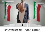 election or referendum in italy.... | Shutterstock . vector #736415884