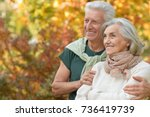 senior couple hugging   in the... | Shutterstock . vector #736419739