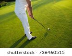 close up. a man is playing golf ... | Shutterstock . vector #736460515