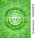 stamina realistic green emblem. ... | Shutterstock .eps vector #736485829