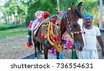 Small photo of Raniwara Rajasthan, India - May 22, 2017 : Indian Decorated Brown Horse and Stableman
