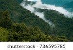 fog in rain forest | Shutterstock . vector #736595785