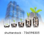 mix coins and seed in clear... | Shutterstock . vector #736598305